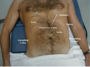 examing the male organ picture 2