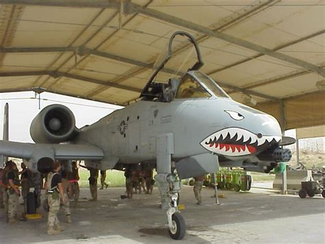 airplanes with teeth picture 7