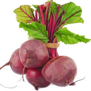 Beet Root picture 7
