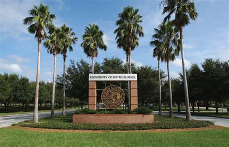 college of public health university of south florida picture 11