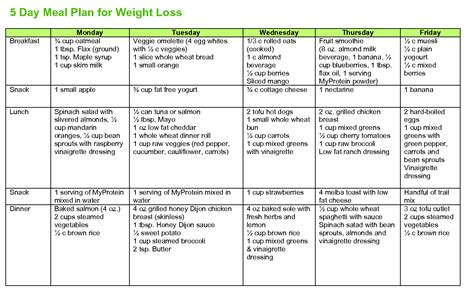 weight loss on the go diet plan picture 8