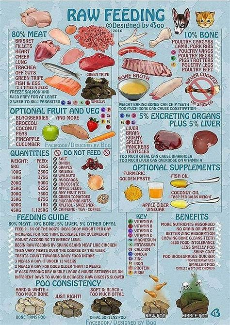 weight loss and raw food diet picture 7