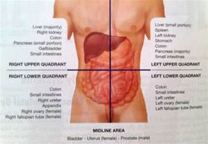 lower left intestinal pain picture 7