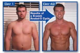 testosterone cycle diet picture 7