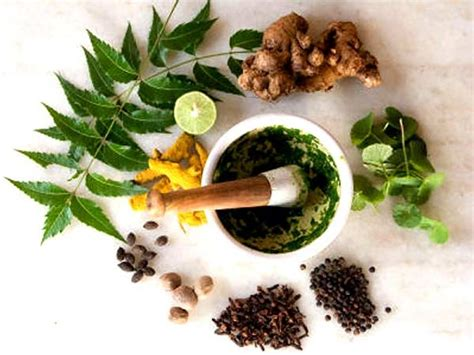 where can i buy the natural herbal venapro picture 11