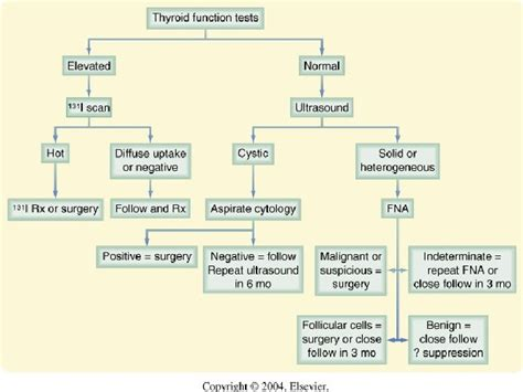 ayurvedic approach to thyroid nodules picture 6