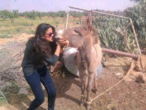donkey and hours sex to indian woman hindi picture 1