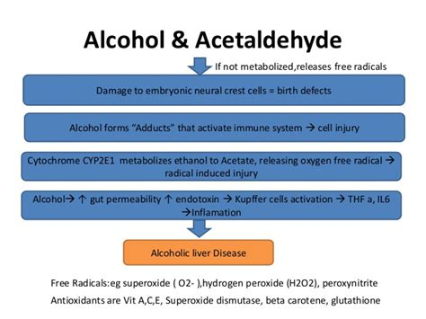 catalase in alcoholic liver cirrhosis picture 6