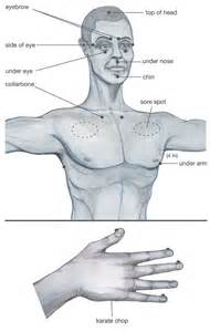 massage prostate diagram picture 9