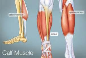calf muscle pain picture 3