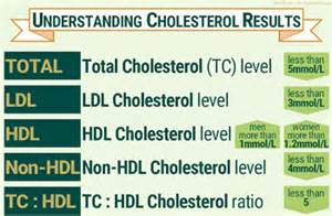 Normal cholesterol test picture 6