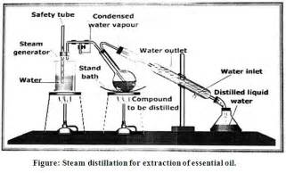 steam distillation essential oil extractor parts picture 17