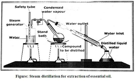 steam distillation essential oil extractor parts picture 11