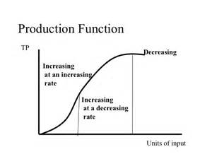 total cost curve and production function picture 6