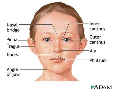will herpes cause deformity in babies? picture 4