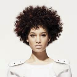 afro hair style picture 7
