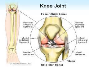 where can i find a site for foods that help with joint pain picture 11