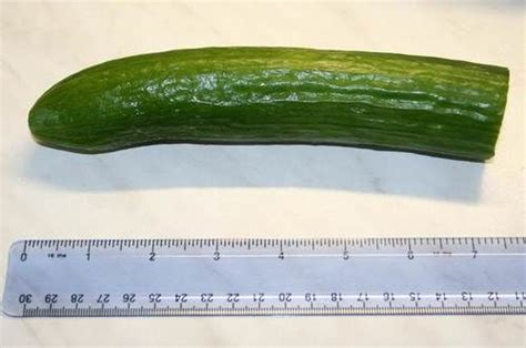 fat 8 inch penis picture 9