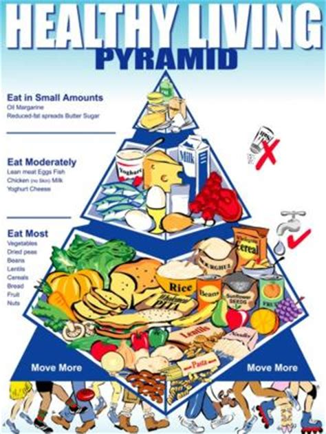 breads and cereals-australian dietary guidelines picture 13