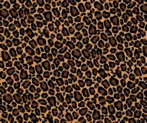 lleopard skin picture 1