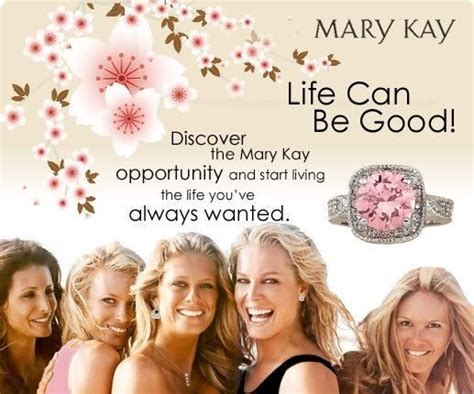 mary kay business opportunity picture 11