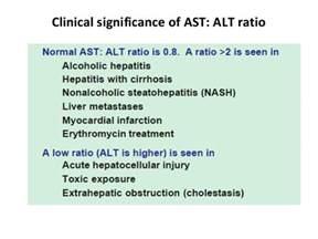liver function test alt picture 1