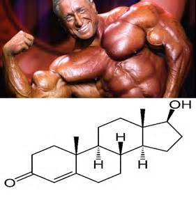testosterone cream for muscle growth picture 7