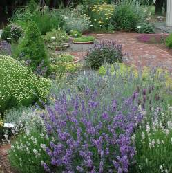 herbal garden picture 17