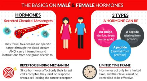 woman gave man female hormones picture 5