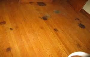 erythmatous patch bladder floor picture 15