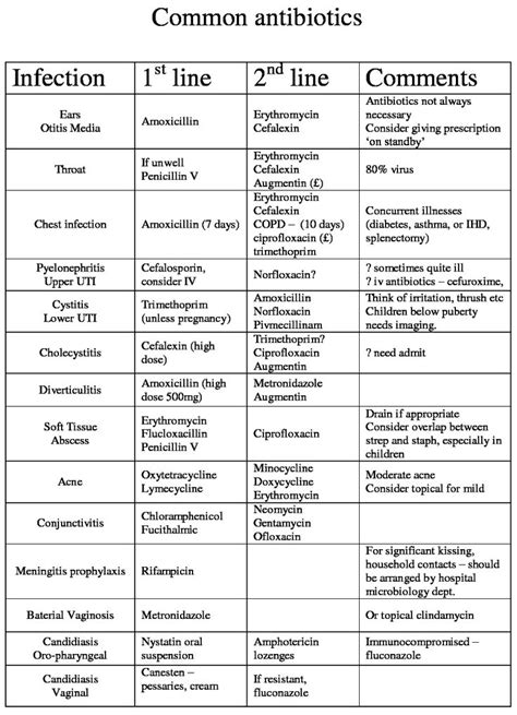 general stages of bacterial infection picture 5