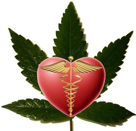 herbal marijuana picture 6