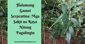 ano ang gamot na herbal sa may fatty picture 12