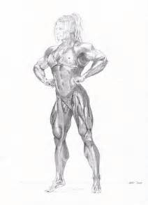 female muscle artwork picture 2