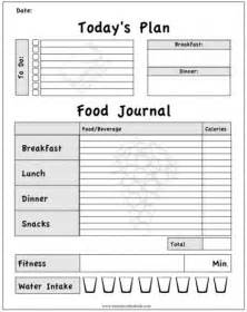 weight loss journals picture 3