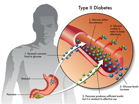 will fenugreek affect blood pressure picture 9