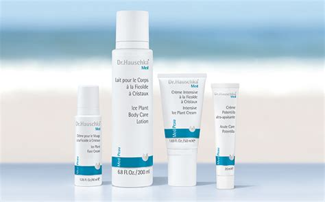 dr hauschka skin care line picture 1