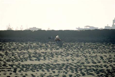 beach voyeurland picture 2