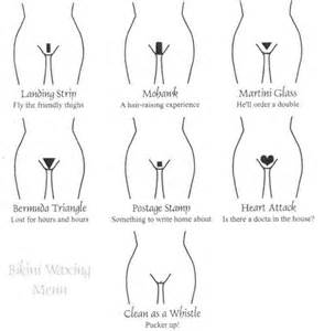 diagrams of differnt positions of penis in vagina picture 9