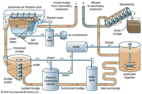 anaerobic digestion picture 21