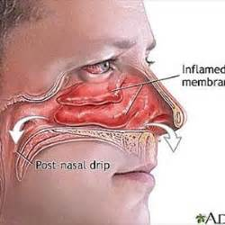 post nasal drip cure with methi seeds picture 1