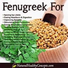 benefits of fenugreek picture 3