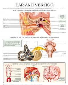 Crohn's disease dizziness low blood pressure nausea picture 2
