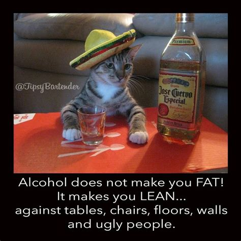 will whiskey make you fat picture 1