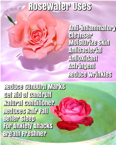 benefits of rose water for skin picture 3