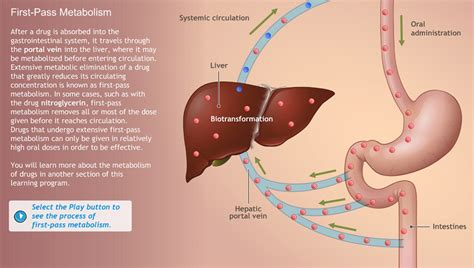 drug absorption animation picture 5