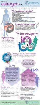 estrogen picture 10