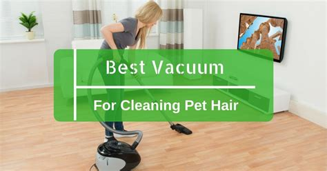 best vaccum cleaner for remove pet hair picture 6