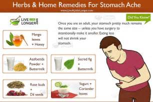 herbs that flatten the stomach? picture 3