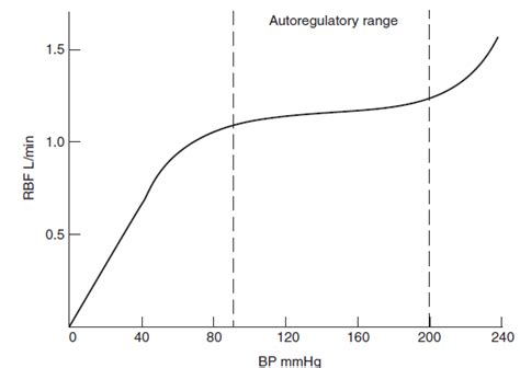 autoregulatory blood flow picture 6